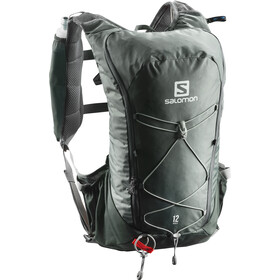 Salomon Agile 12 Backpack Set urban chic/shadow